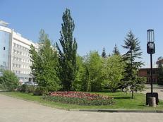 http://img.zzweb.ru/img/1000427/DSC07623.JPG