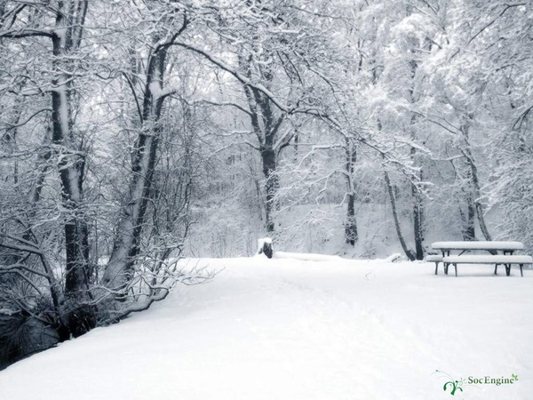 http://img.zzweb.ru/img//728166/Весна.jpg