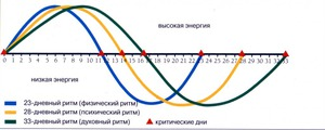 http://img.zzweb.ru/img/755556/biorhythms.jpg
