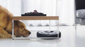 https://img.zzweb.ru/img/762636/dog-and-robot.jpg
