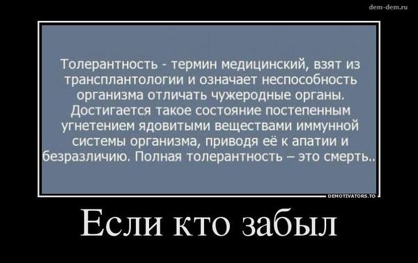https://img.zzweb.ru/img//772068/toler.jpg