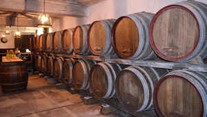 http://img.zzweb.ru/img/788870/wine.jpg