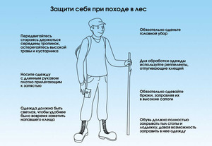 http://img.zzweb.ru/img/812068/kak-zaschischatsa-ot-kleschey.JPG
