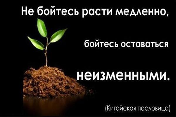 http://img.zzweb.ru/img/826313/222.jpg