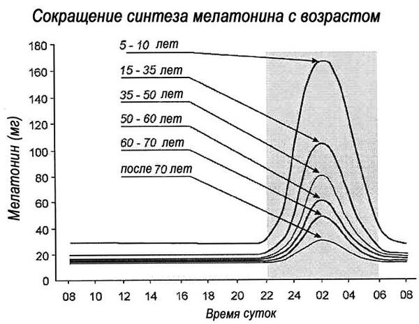 https://img.zzweb.ru/img/829800/sintez-melatonina.jpg
