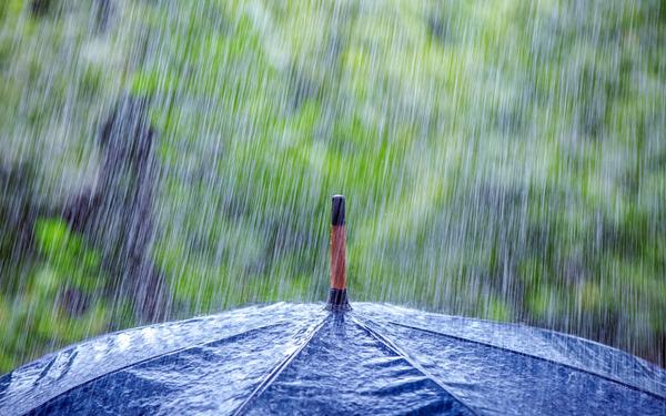 http://img.zzweb.ru/img/894581/rain.jpg