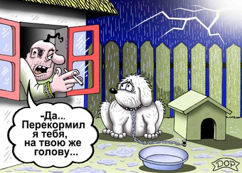 http://img.zzweb.ru/img/959586/ПЕРЕКОРМИЛ.jpg