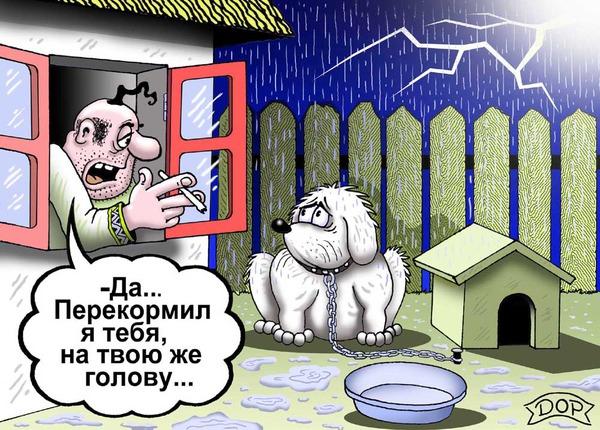 http://img.zzweb.ru/img//959586/ПЕРЕКОРМИЛ.jpg